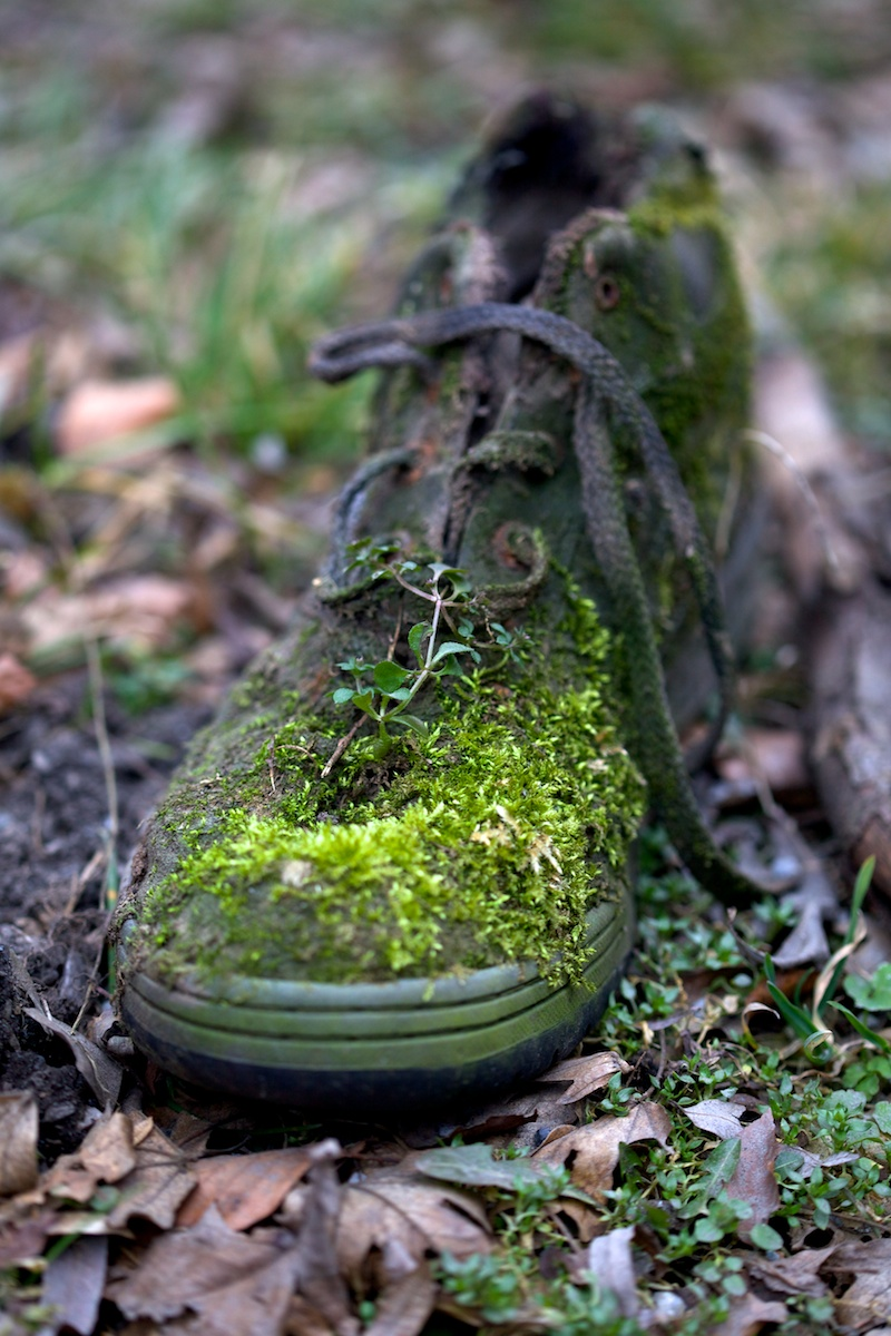 Kvetou boty